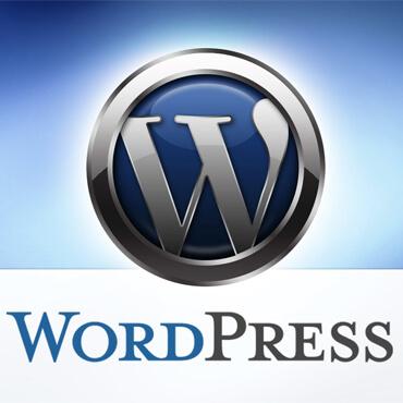 طراحی سایت وردپرس 10
